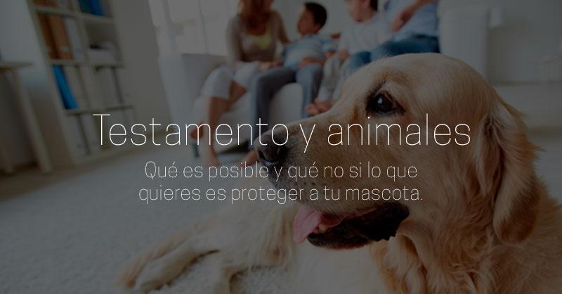 testamento y animales